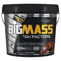Big Joy Bigmass Gh Factors 5 kg Çikolata