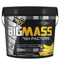Big Joy Bigmass Gh Factors 5 kg Muz